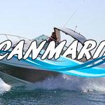 Тест-драйв Sea Ray 305 Sundancer: Серьезный игрок